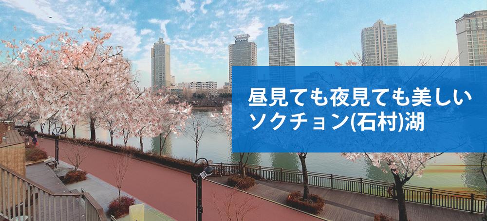 ソクチョン(石村)湖と桜の咲いた通り