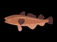 Icon of codfish