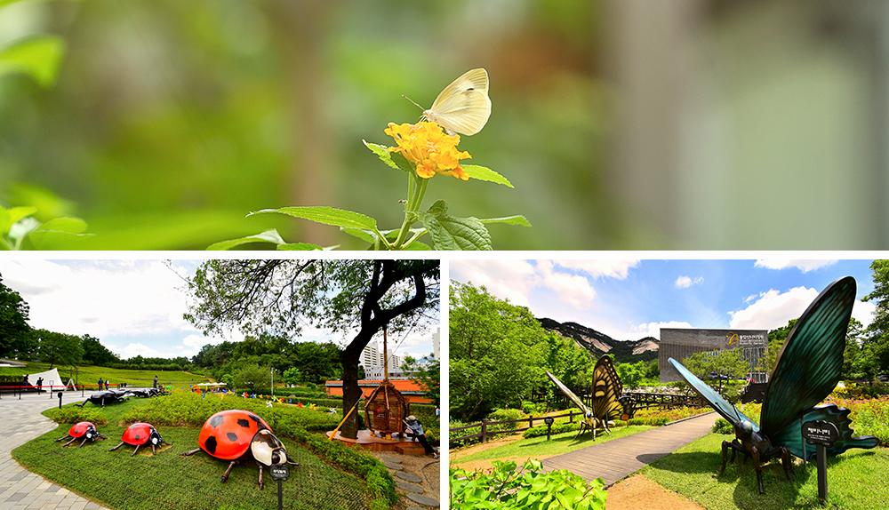 Buramsan Butterfly Garden