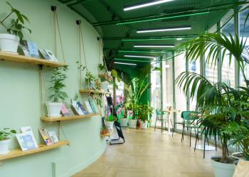여행자터미널 라운지의 내부, 선반에 책들과 식물이 있다