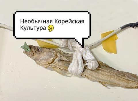 Фото сушенной рыбы с надписью Необычная корейская культура